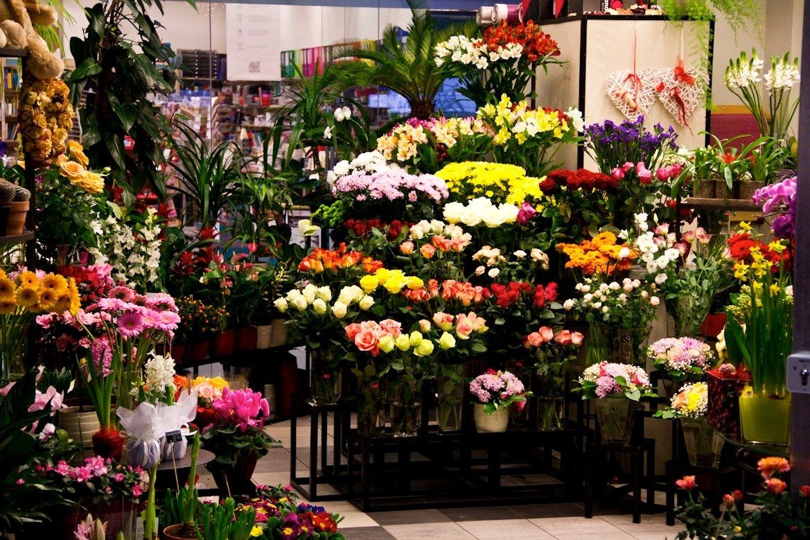 Букеты, планта-а магазин цветов